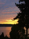 Mercer Island Sunsets