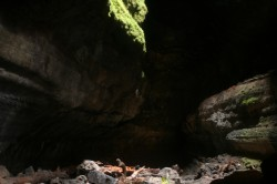Photos from our exploration of Washingtons Ape Cave