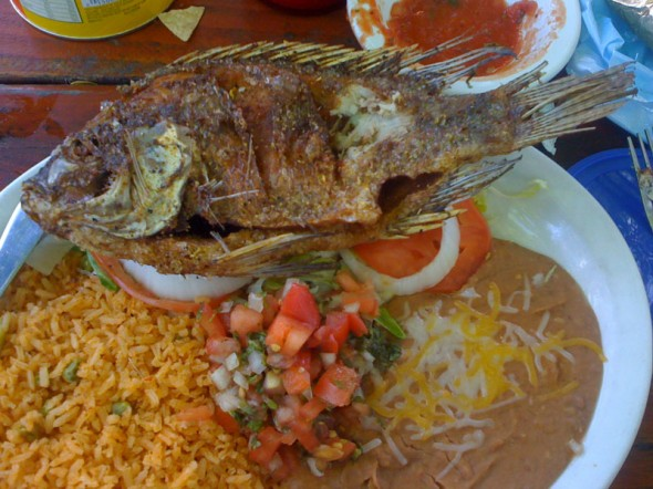 Adventures in mexican food for Mexican fish dishes